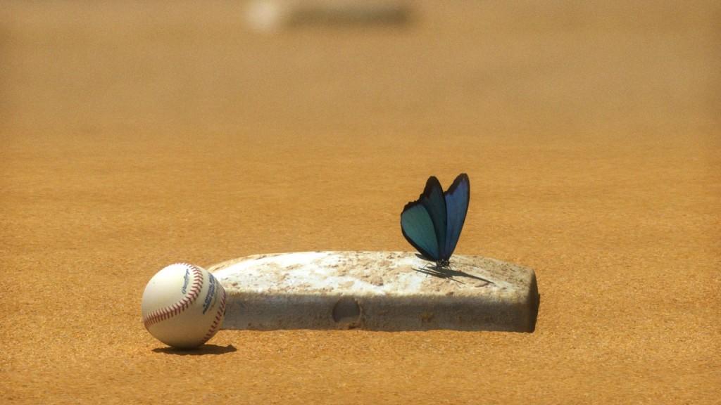 Butterfly_Base